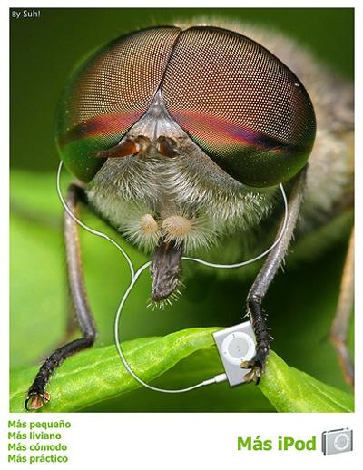 Observamos el tamaño exagerado de una mosca en comparación con el más pequeño iPod; hay una evidente intencionalidad comunicativa de remarcar las medidas del producto a publicitar. En esta imagen, vemos también la figura de la personificación. La combinación de más de una figura retórica en una misma imagen puede combinarse sin problemas de confrontación ni comprensión.Nota legal: Apple. Campaña publicitaria para el producto iPod niño. Autor: Suh. Esta imagen se reproduce acogiéndose al derecho de cita o reseña (art. 32 LPI) y está excluida de la licencia por defecto de estos materiales.