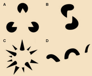 Ejemplos de reificación en el proceso perceptivo. Representación realizada por Steven Lehar que agrupa: (A) el triángulo de Kanizsa, (B) el gusano volumétrico de Peter Tse's, (C) la esfera puntiaguda de Idesawa y (D) el monstruo marino de Peter Tse's. Imagen bajo dominio público. Steven Lehar (2003).