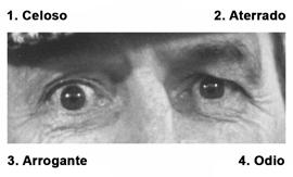 Atribución de estados mentales a través de la mirada