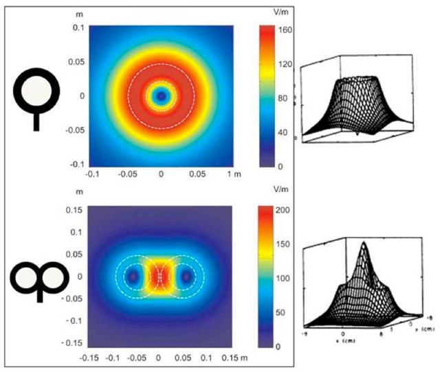 Figura 10. Bobina de estimulación circular y en forma de ocho y sus respectivos campos eléctricos. (Modificada de Hallet, 2007, y Pascual-Leone y Tomas-Muñoz, 2008)